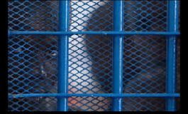 Des évadés de la prison civile de la Croix-des-Bouquets appréhendés à Port-Salut