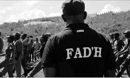 Vous ne voulez pas l'Armée d'Haïti? Pourquoi la Minustah?