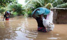 Attention: Maria, le sol ne peut plusrecevoir d'eau