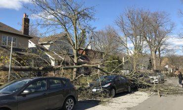 Alerte météo: Le sud de l'ontario (Canada) balayé par des vents extrêmes