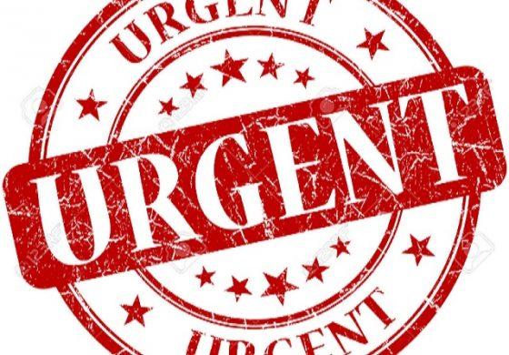Appel à une «aide urgente», des organisations de Personnes Handicapées