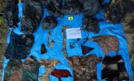 Découverte de 166 cadavres dans une fosse au Mexique