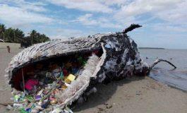 Les plus gros producteurs de déchets plastiques au monde sont...