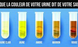Ce que la couleur de votre urine révèle sur votre état de santé