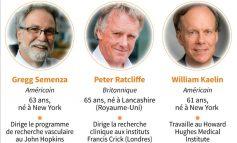 Deux américains et un anglais ont reçu le Prix Nobel de Médecine 2019