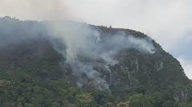Incendie dans une forêt du Parc National Historique Citadelle/Sans-Souci/Ramier (PNH-CSSR)