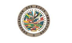 Haiti : l'OEA exige des élections législatives avant Janvier 2021