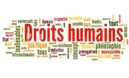 La représentante du secteur des Droits humains au CEP, produit d'un consensus